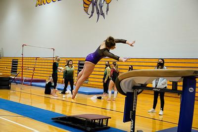 Gymnastics vs Wawasee 20210123-0183