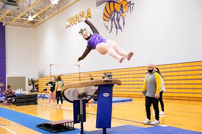 Gymnastics vs Wawasee 20210123-0077