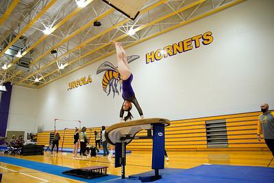 Gymnastics vs Wawasee 20210123-0110