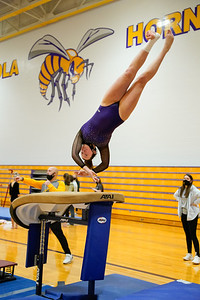 Gymnastics vs Wawasee 20210123-0135