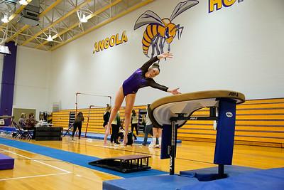 Gymnastics vs Wawasee 20210123-0104