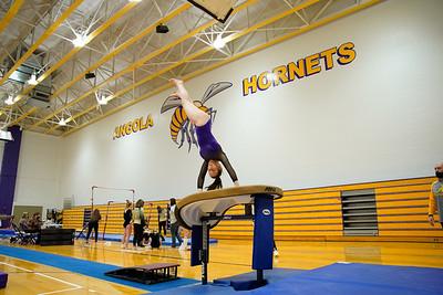 Gymnastics vs Wawasee 20210123-0109