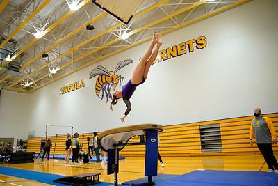 Gymnastics vs Wawasee 20210123-0113