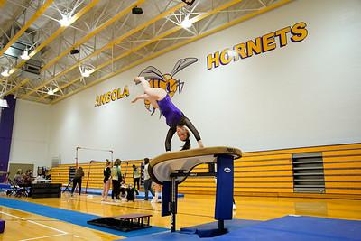 Gymnastics vs Wawasee 20210123-0108