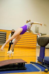 Gymnastics vs Northrup 20210125-0109