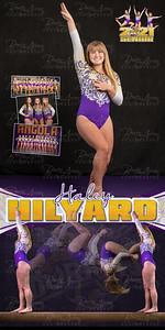 Gymnastics Haley Hilyard Banner