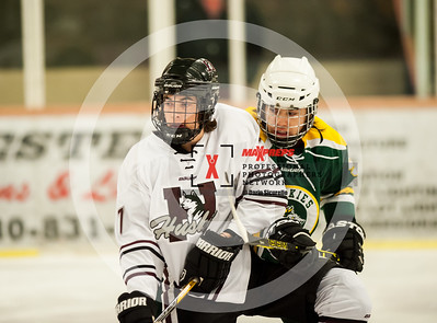 maxpreps sicurello Hockey16 HorizonvsHamiton-4913