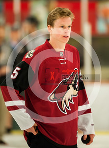 maxpreps sicurello Hockey16 HorizonvsHamiton-4905