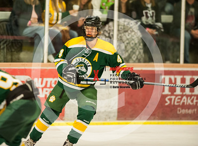 maxpreps sicurello Hockey16 HorizonvsHamiton-4956