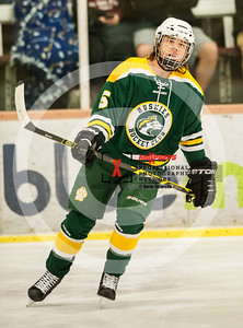 maxpreps sicurello Hockey16 HorizonvsHamiton-4845