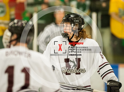 maxpreps sicurello Hockey16 HorizonvsHamiton-4928