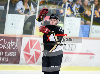 maxpreps sicurello Hockey17 D3 ShadowRidgevsDesertVista-7119