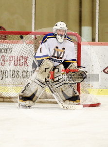 maxpreps sicurello Hockey17 D3 ShadowRidgevsDesertVista-6965