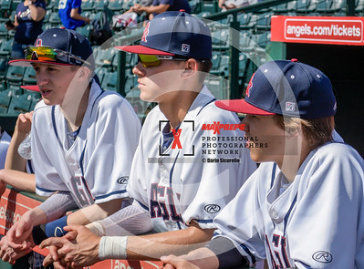 maxpreps sicurello maxpreps baseball18 DALLESORvsDAKOTARIGCO-6399