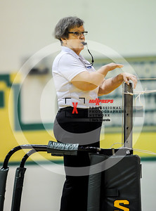 sicurello maxpreps vball17 SkylivevsMountainView-4392