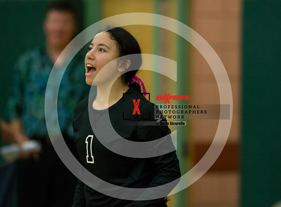 maxpreps sicurello Volleyball16 CampoVerdevsMesquite-5046