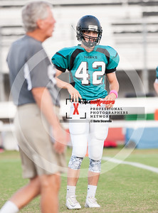 maxpreps sicurello football15-HighlandvsMountainviewFresh-6893