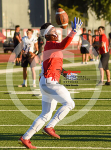 sicurello maxpreps football17 WilliamsFieldvsArcadia-17-33