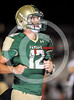 sicurello maxpreps football17 SkylinevsHamilton-6122