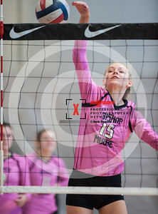 maxpreps sicurello VolleyballG16 TOC Sat Bishop MoorevsMaterDei-6236
