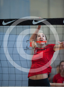 maxpreps sicurello VolleyballG16 TOC Sat Bishop MoorevsMaterDei-6115