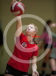 maxpreps sicurello VolleyballG16 TOC Sat Bishop MoorevsMaterDei-6071