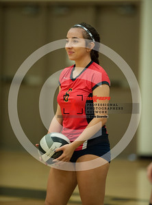 maxpreps sicurello VolleyballG SaguarovsSeton-8135