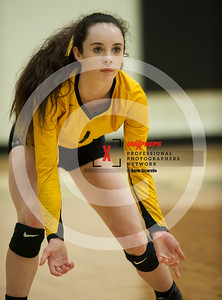 maxpreps sicurello VolleyballG SaguarovsSeton-8114