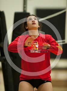 maxpreps sicurello VolleyballG SaguarovsSeton-8149