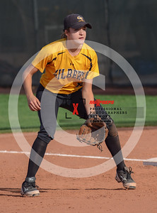 sicurello darin maxpreps Softball - Dobson vs Gilbert-0346