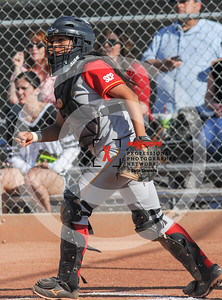 sicurello darin maxpreps Softball - Williams Field vs Seton-7730