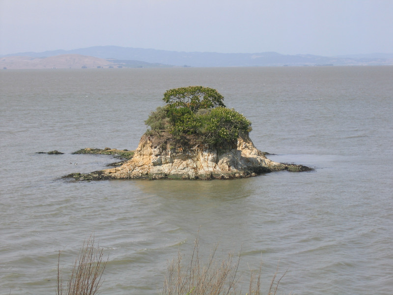 A lone island...small in stature but big on presence.  View from China Camp.