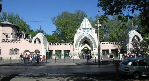 Grade One Zoo