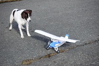 AJ and RC Plane-02337