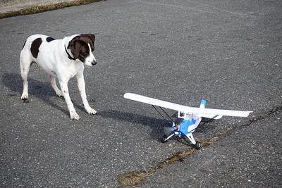 AJ and RC Plane-02339