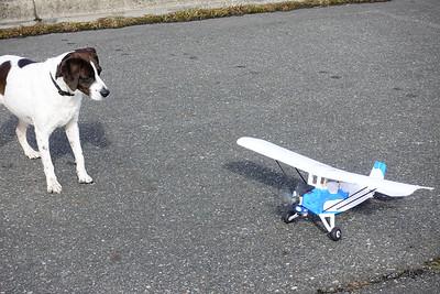 AJ and RC Plane-02334