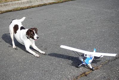 AJ and RC Plane-02341