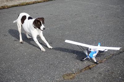 AJ and RC Plane-02340
