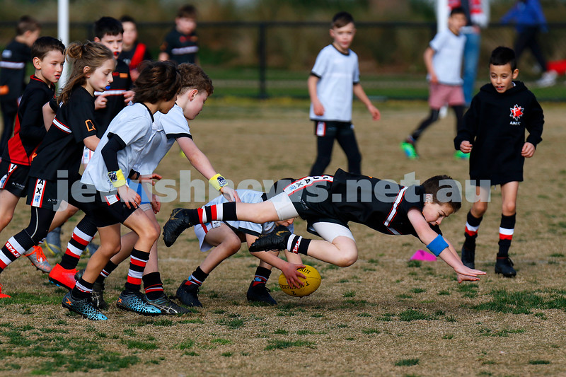 28-6-20. AJAX football U 9s Stars and Rockets training at Princes Park, Caulfield. First practice match since COVID 19 restrictions. Photo: Peter Haskin