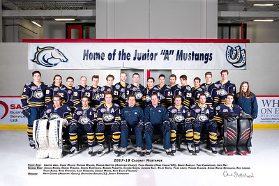 2017 Mustangs Team Photo Protected