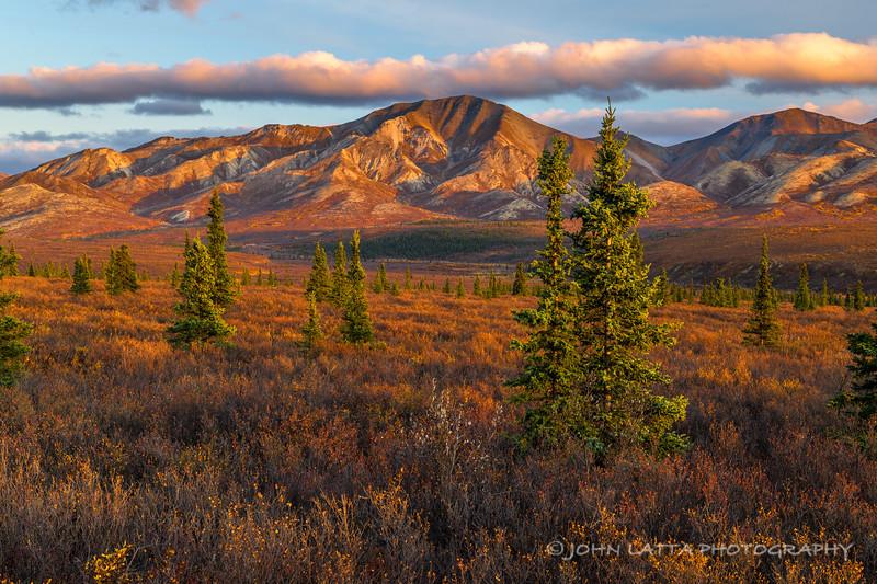 Subarctic Mountains