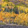 Fall Mountainside
