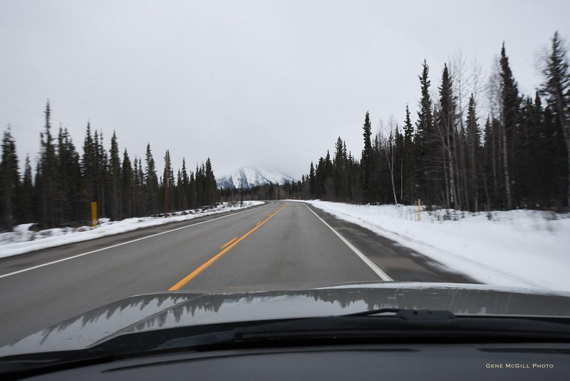 Between Delta Junction and Tok on the Alaska Highway.  Note the thick clouds shrouding the peaks, denying us one last view of the higher regions of the Eastern Alaska Range.