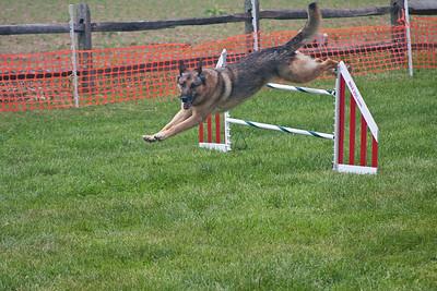 AKC Agility Trials 6/26/2009 - 6/28/2009