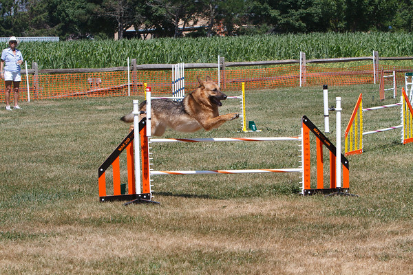 GNYHC Agility Trials 7/5/2010