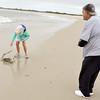 Sharon and coastal shark