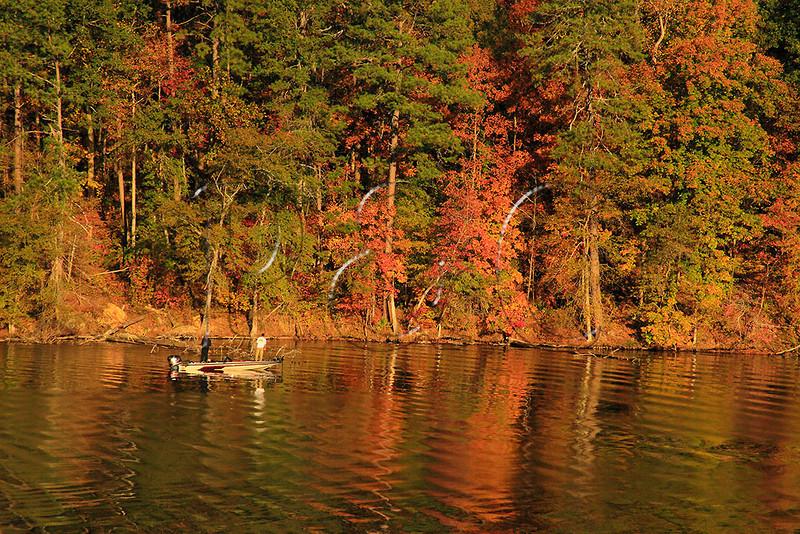 AL GUNTERSVILLE LAKE GUNTERSVILLE STATE PARK LAKE GUNTERSVILLE TOWN CREEK OCTJJ_MG_8220MbmmW