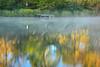 AL GUNTERSVILLE LAKE GUNTERSVILLE STATE PARK LAKE GUNTERSVILLE OCTJJ_MG_7551MbmmW