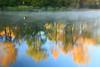 AL GUNTERSVILLE LAKE GUNTERSVILLE STATE PARK LAKE GUNTERSVILLE OCTJJ_MG_7506MbmmW