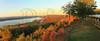 AL GUNTERSVILLE LAKE GUNTERSVILLE STATE PARK LAKE GUNTERSVILLE LODGE VIEW OCTJJ_MG_1295 PANMbmmW